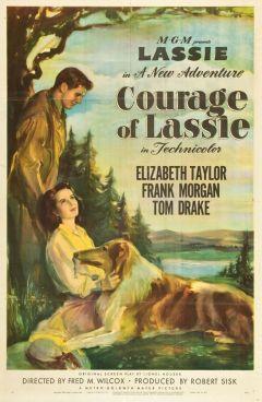 Храбрость Лэсси