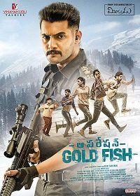 Операция Золотая рыбка